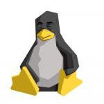 linux DS